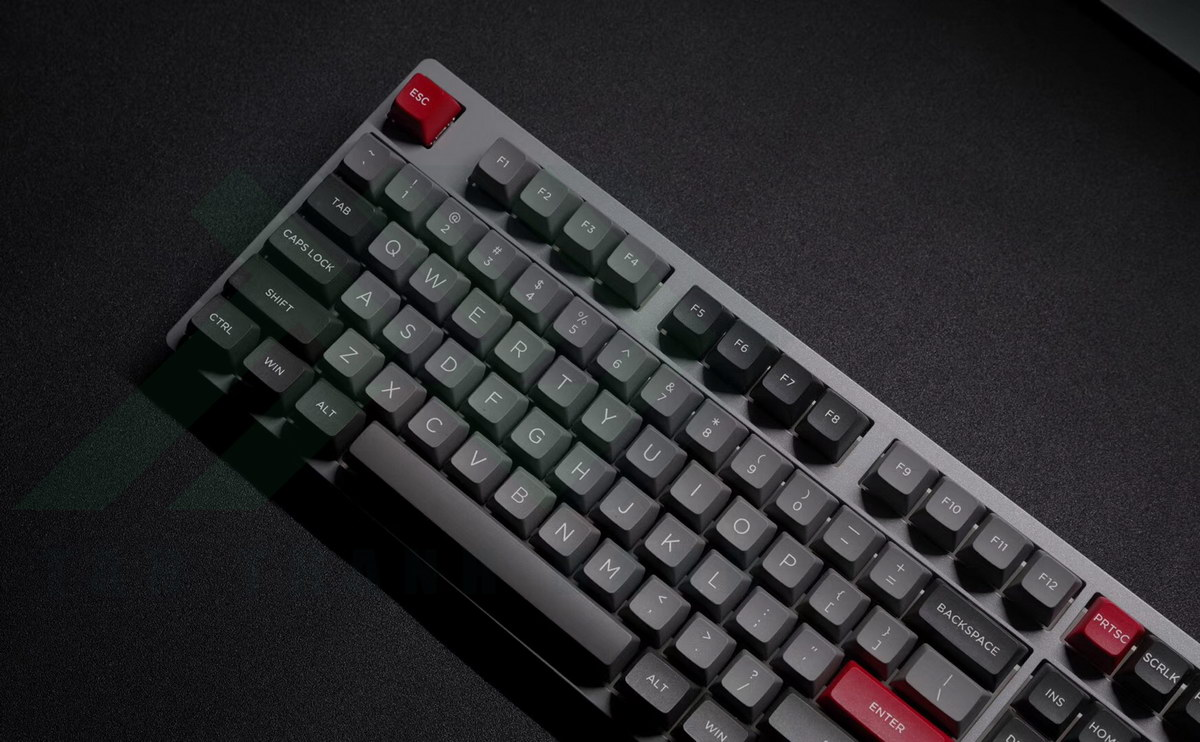 Akko 3108 V2 OSA Keyboard Grey Parro Psittacus Photos 3