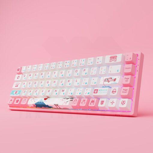 Akko 3068 v2 World Tour Tokyo R2 Keyboard 4